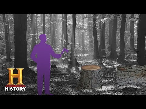 America 101: What is a Stump Speech? | History