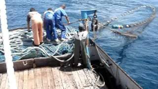 Brazilian Fishing vessel pulling the net [Part One]