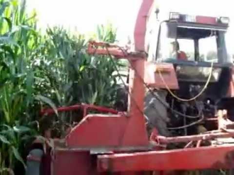 Młodzieńczy koszenie kukurydzy 2010, kemper sprinter + case 956 XL - YouTube DJ76