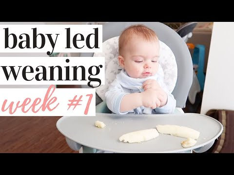 starting-baby-led-weaning!-essentials-+-week-1-recap-|-kayla-buell
