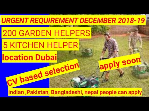 Helper jobs in dubai II kitchen helper in dubai II free working visa with good salary