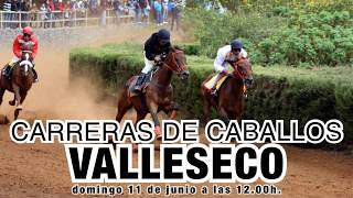 Domingo de carreras de caballos en Valleseco