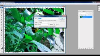 How to Make Lomo Effect in Photoshop