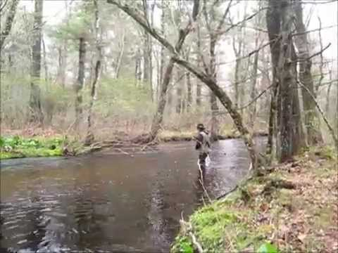 trout fishing with a spinning reel - youtube, Fly Fishing Bait