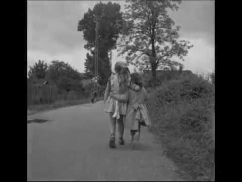 Gerard Lenorman -  Sur le chemin de la vie