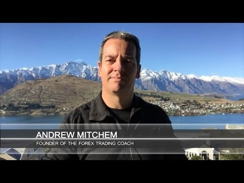 Currency strength weakness forex trading coach andrew mitchem