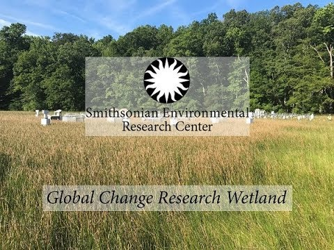 Global Change Research Wetland--2017 Citizen Science Newsletter