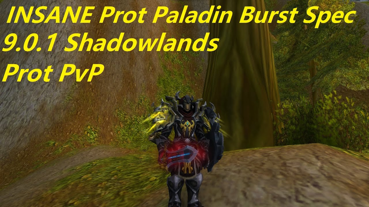 WoW 9.0.1 Shadowlands - Prot Paladin PvP - INSANE New Burst Spec - Arena + 1v2s