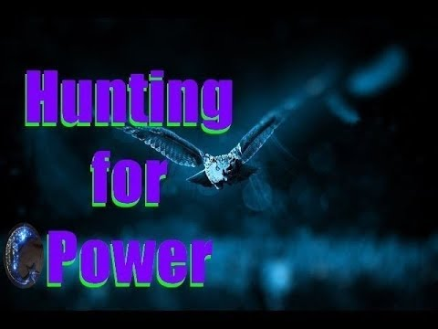 Hunting Power - Expand Your Consciousness by Changing Habits
