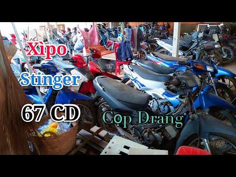 Báo giá Bãi xe Xipo 67 CD Cọp Drang Còn nhiều xe đẹp |Ngố Nguyễn