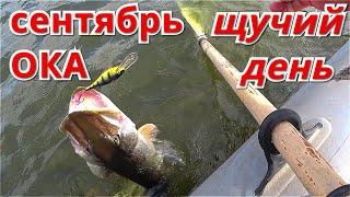 Рыбалка на ОКЕ на СПИННИНГ с ЛОДКИ. Это был ЩУЧИЙ ДЕНЬ.