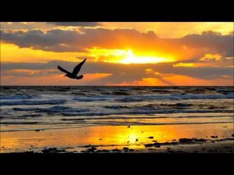 Слушать PPK - Resurection (Paul Oakenfold Full On Fluoro Mix) бесплатно