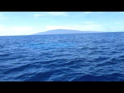 Atlantis Submarine Rising Off Maui