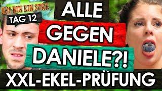 Dschungelcamp 2018 - Tag 12: JENNYs XXL-EKEL-Prüfung 🤮 ALLE GEGEN Daniele Negroni? ⚡🤬 IBES RTL