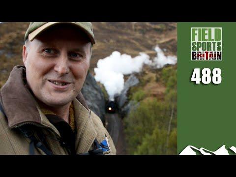 fieldsports-britain---scottish-deer-on-the-line
