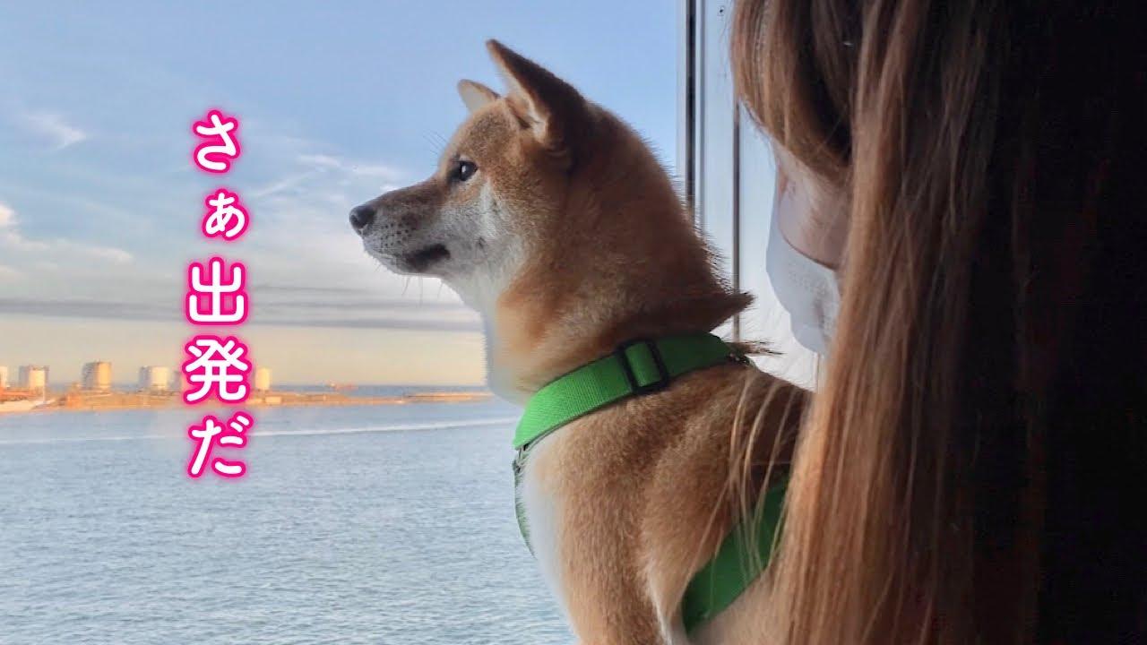 愛犬とフェリーに乗って大移動が始まりました