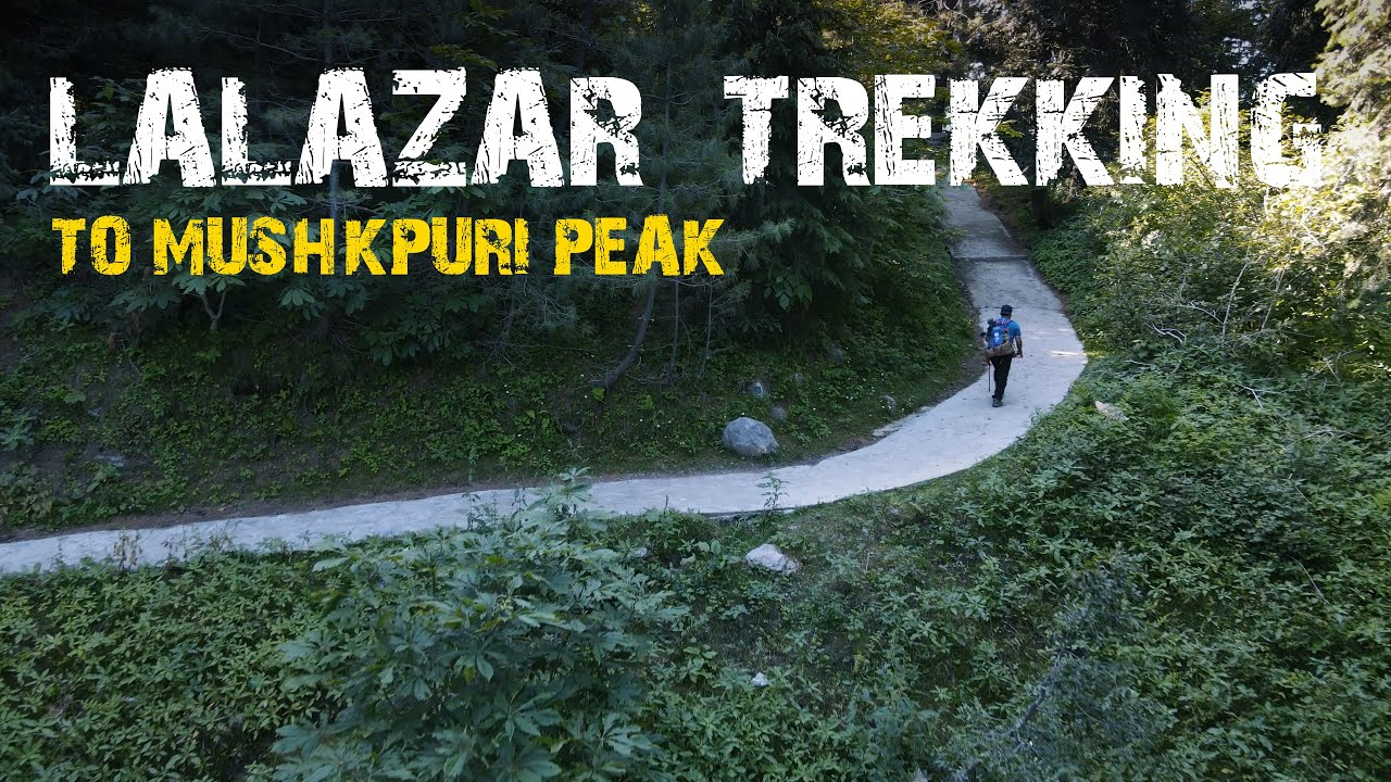 Nature hike in LALAZAR wild life and Mushkpuri Peak ft. SECOND CUP Coffee