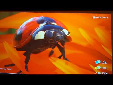 Repeat Optoma UHD 40 Calibration Settings by BitsBytesBobs