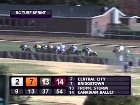 2010 Breeders Cup Turf Sprint Youtube