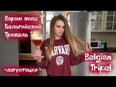 Варим домашнее пиво Бельгийский Трипель. Крепкое бельгийское пиво в домашних условиях. Tripel.