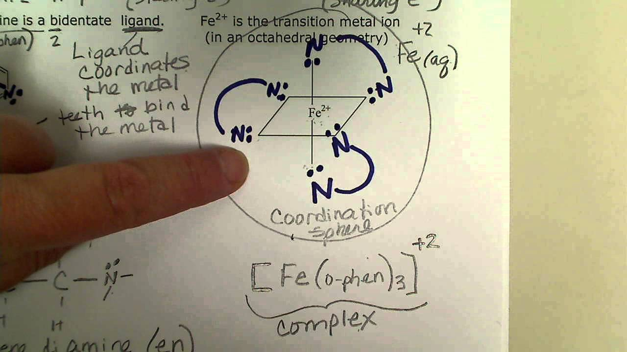 Complex Number Metal Ion Coordination