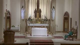 Sixteenth Sunday in Ordinary Time - 10:30 Mass at St. Joseph's (7.19.20)