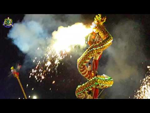 Chinese New Year Dragon Show || Chinese Traditional New Year || Dragon Dance