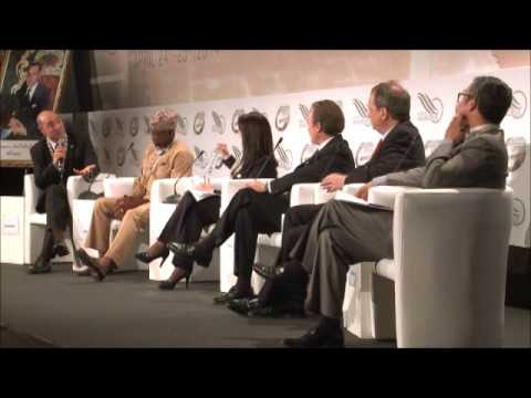 GGC 2014 : Energy and Green Growth in Africa