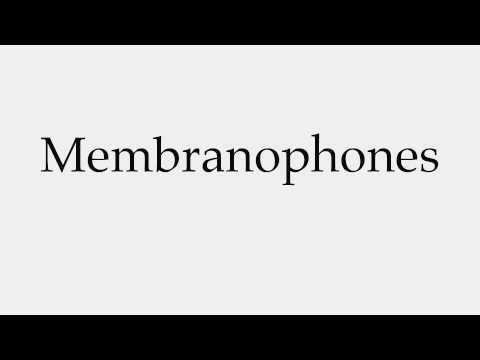 How to Pronounce Membranophones