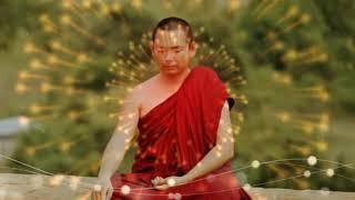 Nhạc thiền tĩnh tâm, tự tại và giải thoát