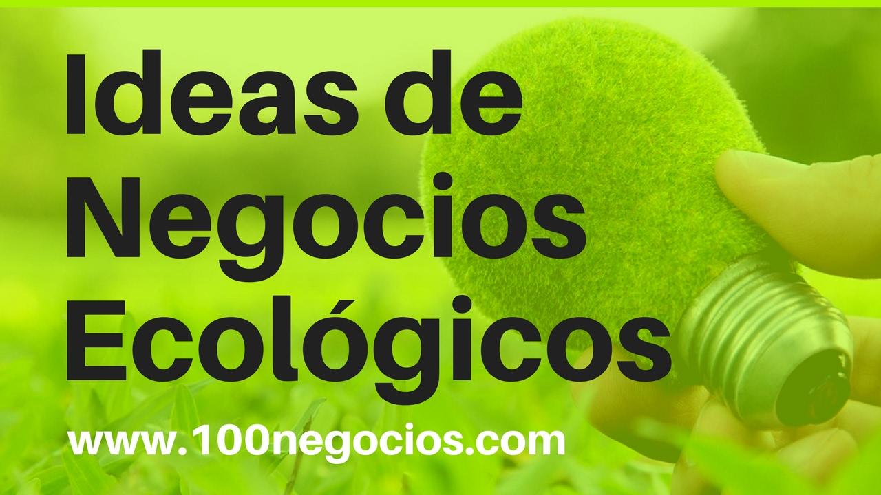 10 Ideas Innovadoras de Negocios Ecológicos en Mexico