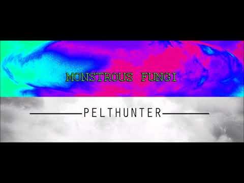 Monstrous Fungi feat. Pelthunter - Random Anger