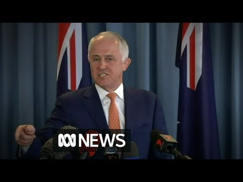 Furious Turnbull decries citizenship 'witch hunt'