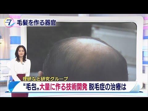 髪の毛の種が発見された!
