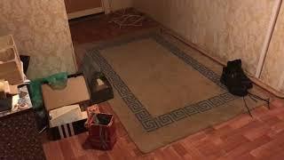 Моя убитая квартира. Начало (часть 1)