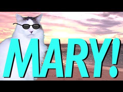 HAPPY BIRTHDAY MARY! - EPIC CAT Happy Birthday Song - YouTube
