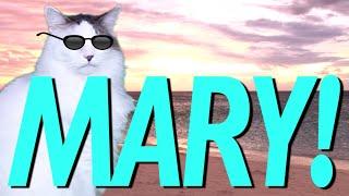 HAPPY BIRTHDAY MARY! - EPIC CAT Happy Birthday Song