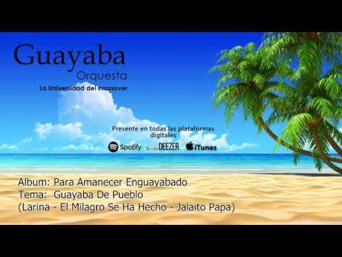 Larina - El Milagro Se Ha Hecho - Jalaito Papa (Guayaba Orquesta)