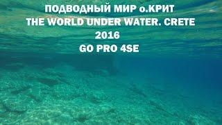 Подводный мир Крита / The World Under Water. Crete 2016(Нарезка видео из подводных съёмок камерой GoPro 4SE на Крите в августе 2016 г. Разные бухты в Агиа Пелагея и Бали...., 2016-08-31T09:41:15.000Z)
