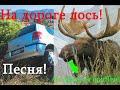 Виктор Лебедев : На дороге лось. Юмор. AlterEgo. №1  On the road the Moose
