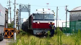 日本唯一!鉄道架道橋を行くDF200 (関西本線四日市)