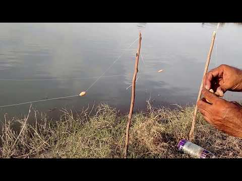 fishing in pakistan indus river 2016