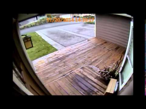 Renton Mail Theft