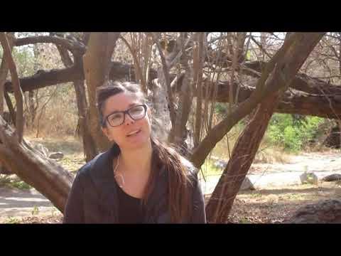 "Entrevista a ""Escenativa Teatro"""