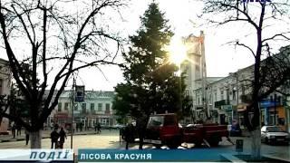 Смотреть видео У Львові для ялинки придбали нові прикраси