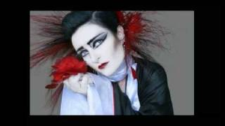 Watch Siouxsie  The Banshees Take Me Back video