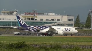 Special Livery 787! Ana (All Nippon Airways) Boeing 787-8 Dreamliner Ja801a In Toyama Airport