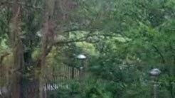 Cork Weather - Rainy