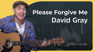Please Forgive Me - David Gray - Easy Acoustic Beginner Guitar Lesson (BS-601)