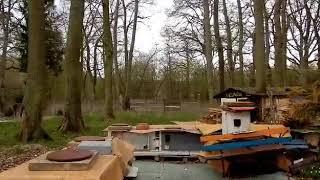JAROMIN - DPS : obcy kocur z osiedla śpi na mchu dachu szopy